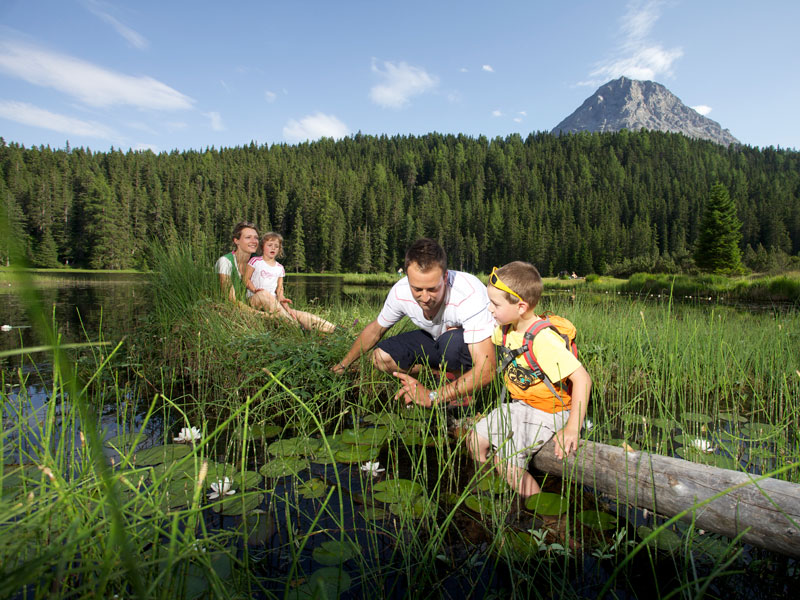 Family holidays in Ried in theTiroler Oberland